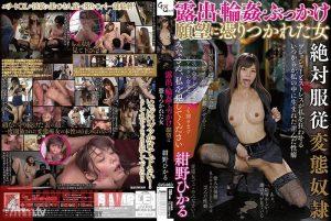 ดูหนังโป๊ออนไลน์ Hikaru Konno ขึ้นขย่มในออฟฟิต
