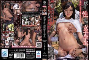 ดูหนังโป๊ออนไลน์ APNS-197 Shiraishi Kanna